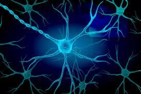 reti_neuronali