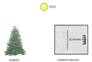 schema_camera_oscura